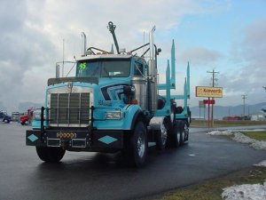 1995 kenworth t800 logging truck for sale riverton wy free classifieds in usa. Black Bedroom Furniture Sets. Home Design Ideas